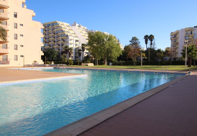 Apartment for rent Praia Da Rocha Portugal with Pool to share