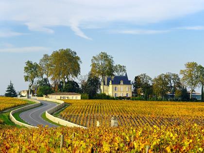 Culturele tour in Bordeaux tussen cultuur, erfgoed en grand crus - 7J/6N