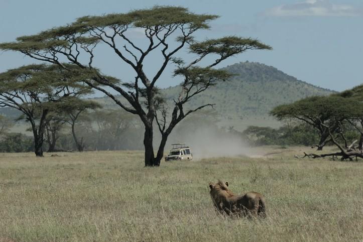 Safari en Tanzanie au pied du Grand Rift - 13J/12N