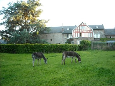 four cottages on the farm, Belgium