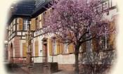 Chambre d'hôtes Alsace