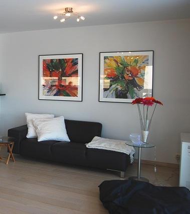 Appartement à Blankenberge - Miramar
