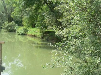 Location gîte à Sampigny