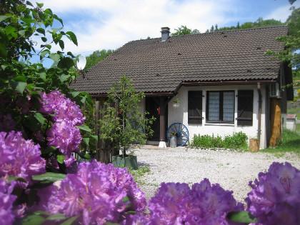 Location maison Vosges