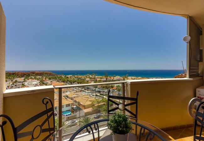 Apartment for rent Palm - Mar Espagne with Pool to share