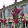 Villa de charme au cœur du Médoc viticole